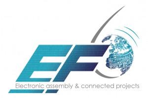 logo_ef6-10-300x198